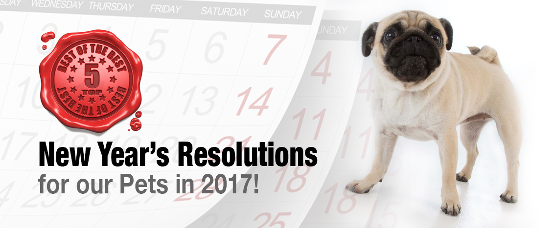 top5holidayresolutions_blog