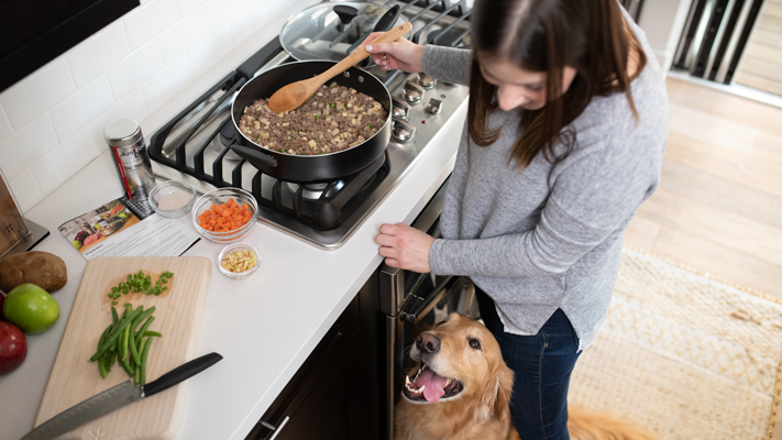 homemade meals for dogs