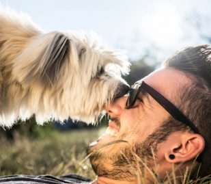 Top 5 Health Benefits of Owning A Pet