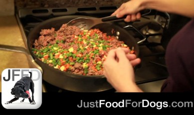 How to Make Homemade Dog Food