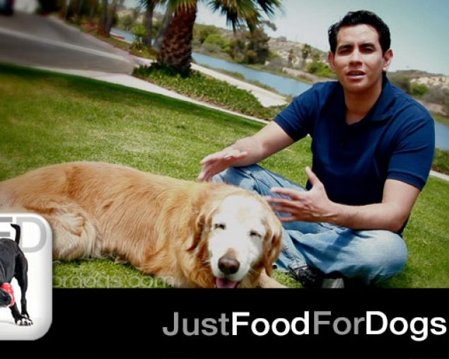 Dr. Oscar Chavez, His Dog Rey and JustFoodForDogs