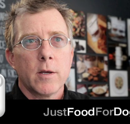 Why did you start JustFoodForDogs?