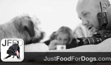 JustFoodForDogs Close Up: Photographer David Capron