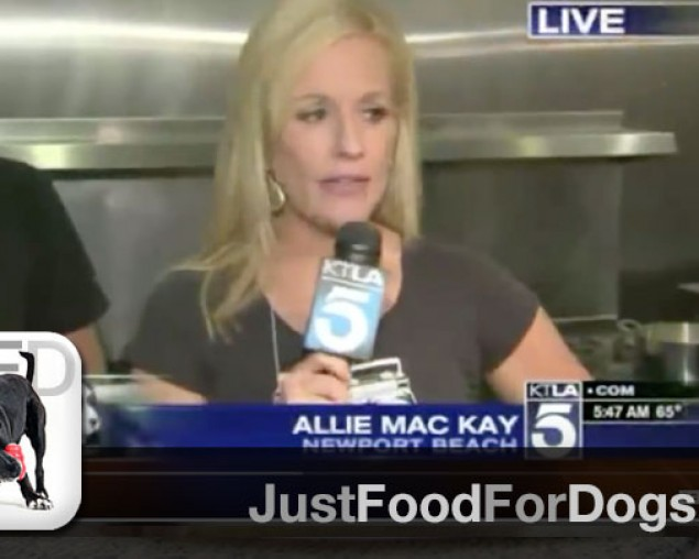Allie MacKay and KTLA 5AM Broadcast from JustFoodFordogs – Segment 1
