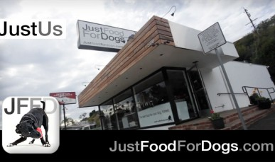 JustUs: An Introduction to The World's first Dog Kitchen and Nutrition center