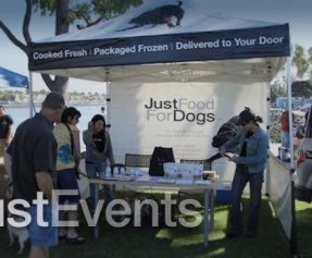 Labroador ADOPTION EVENT at TrueFoodForDogs