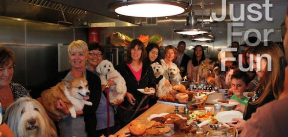 "True Food For Dogs Hosts It's First ""Yappy Hour"", Must Wear Leash and ID"