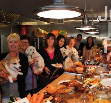 April Yappy Hour at TrueFoodForDogs