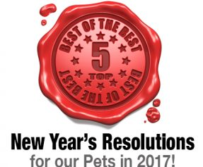 Top 5 New Years Resolution for our Pets in 2017!