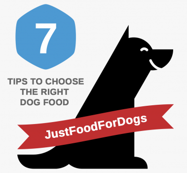 7 Tips for Choosing Exactly the Right Food for Your Dog
