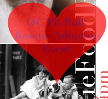 OC Pit Bull Rescue Adoption Event
